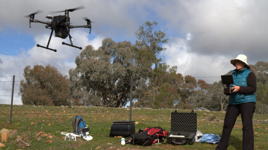 Wildlife Drones in action