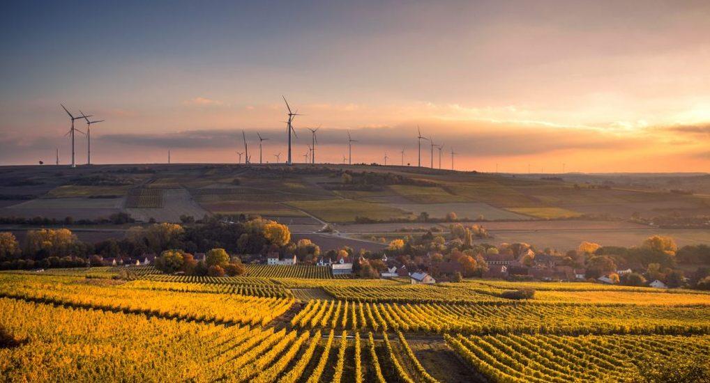 A farming field with a wind farm.